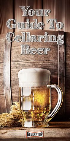 Aging Gracefully: A Guide to Cellaring Beer