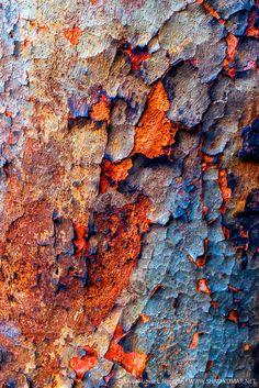 Colorful Imperfections #3 by Shivakumar Lakshminarayana - Photo 73180733 - 500px