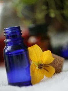 Heal ECZEMA, PSORIASIS,ACNE,SKIN LESION -Essential Oils #EnchantedWaters