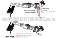 Best chest exercises for lower and upper chest | Weight Training Guide Side Bends Exercise, Dumbbell Fly, Best Chest Workout, Chest Workouts, Gym Workouts, Chest Exercises, Weight Training, Biceps, Exercises