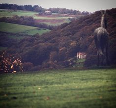 Rievaulx Terrace Views  #rievaulxterrace #views #landscape #scuplture #art #nationaltrust #yorkshire #autumn #colours #forest #trees #buildings #house #distance #hills #countryside #instalike #photo #pic #walking #visit #northyorkshire