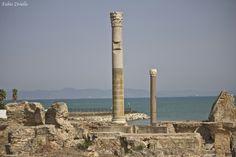 Cartagine dalle rovine