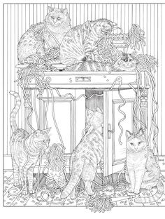 #ClippedOnIssuu from Inkijkexemplaar Franciens kattenkleurboek - Francien van Westering