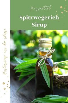 Spitzwegerichsirup selber machen – Hustensaft aus der Wiese | Hustensaft selber machen; Hausmittel bei Erkältung #mitliebegemacht Beer Cooler, Diy Projects For Beginners, Chicken Feed, Presents For Her, Holiday Break, Mom Day, You Are The Father, Mojito, Cucumber