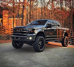 Ford F-150 4X4 http://budgetmotorsports.com/shop/