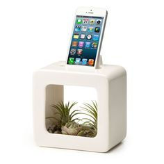 This would make a gorgeous gift for a friend with a green thumb.  Price: $40