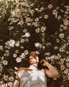 Floral, aesthetic, daisy, wildflowers Spring Aesthetic, Nature Aesthetic, Flower Aesthetic, Book Aesthetic, Character Aesthetic, Aesthetic Vintage, Aesthetic Photo, Aesthetic Girl, Aesthetic Pictures