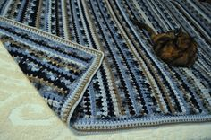 Blue mosaic with simple border - 1 round of SC, 3 rounds of moss stitch (SC, CH, SC), last round of SC.  New blankets are cat magnets, lol!  #crochet #afghan #blanket