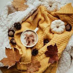 autumn scenery appeared first on Trendy. autumn scenery appeared first on Trendy. Autumn Flatlay, Autumn Cozy, Autumn Fall, Autumn Feeling, Autumn Aesthetic, Cozy Aesthetic, Autumn Scenery, Autumn Photography, Morning Photography
