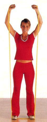 esercizi braccia ginnastica in casa programma allenamento