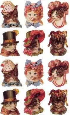 Victorian kitty fashion!