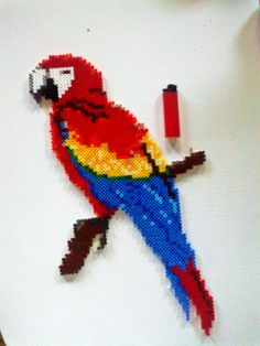 Scarlet macaw bird perler beads by pamelatherese on deviantart