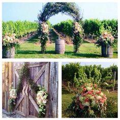 Rustic Barn to the beautiful vineyard