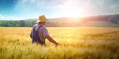 Her Eve Bir Çiftçi - Doğa ve Çevre - Sağlık - Tarım - Yaşam   Apelasyon