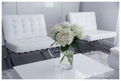 http://honeyvilla.com/hydrangeas/
