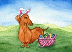 In honor of Easter I painted a Dachshund with a basket of pastel bones. The wiener dog is wearing bunny ears and looking very pleased wit. Dachshund Funny, Dachshund Breed, Dachshund Art, Long Haired Dachshund, Daschund, Dachshund Drawing, Dachshund Quotes, Scottish Terrier, I Love Dogs