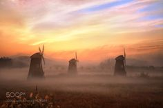 Dawn and Fog by c1113 via http://ift.tt/2uyzly0