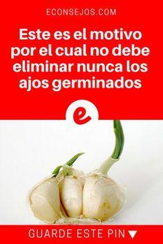 Guardar ajos   Este es el motivo por el cual no debe eliminar nunca los ajos germinados   Vale la pena saber. Lea y decubra todo.
