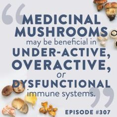 Are medicinal mushrooms worth the hype? We cover the science in this episode of The Whole View Podcast. #medicinalmushrooms #mushrooms #mushroommagic #immunehealth Healthy Life, Healthy Living, Paleo Mom, Gut Microbiome, Medical Research, Holistic Approach, Gut Health, Alternative Medicine, Immune System