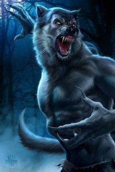 werewolf ~~ @Andrew Mager O'Malley Meenie :( haha bed time goodnight im blaming you when i have nightmares ;) ~~
