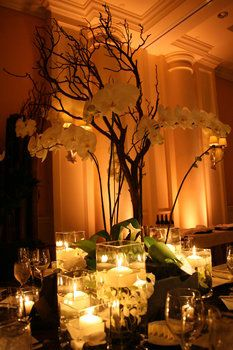 Wedding, Flowers, Reception, Green, Decor, Brown, Orchid