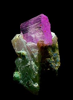 Kunzite crystal on Fluorite and Quartz