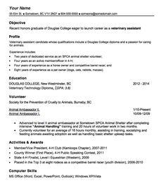 vet tech resume template httpexampleresumecvorgvet tech - Veterinary Technician Resume