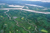 Aguas abajo el río se divide en varios brazos que forman islas fluviales.
