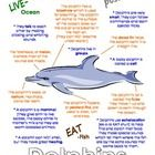 """This """"All About Book"""" will be a fun addition to your classroom and lesson on dolphins. Other ocean animals included in this series are seahorses, jellyfish, sea stars (starfish), stingrays, sea turtles, sharks, octopus, whales and crabs. Offered individually or as a bundle pack of all 10 ocean animals."""