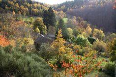 Les Cevennes    http://www.fond-ecran-image.fr/galerie-membre/france-cevennes/img-0037.jpg