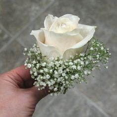 Image from http://www.wflowersottawa.com/static/files/images/productimage-picture-ivory-rose-wedding-corsage-322_jpg_460x460_q85_wm.jpg.