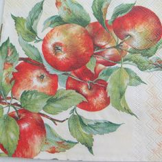 Paper napkin serviette x Use for decoupage, scrapbooking, or other paper and decorating projects. Apples on a ivory background. You will receive ONE paper napkin Cocktail size - 25 x or 10 x 10 inches. Paper Napkins For Decoupage, Cocktail Napkins, Apples, Projects To Try, Leaves, Scrapbook, Fruit, Kitchen, Flowers