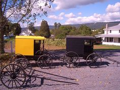 Mifflin County Amish Buggy Styles