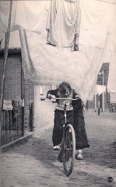 Mijn favoriet uit het boekje 'Nederland' van Kees Scherer, uit 1960.  p 108 Wasdag te Kampen