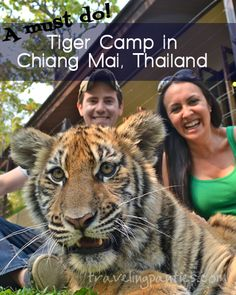 Have an adventure on your honeymoon in Chiang Mai, Thailand! The tiger camp was easily one of my favorite activities of our entire honeymoon