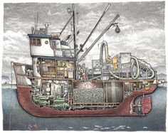 This is a print shows the workings of a salmon tender with a fish pump unloading a seiner. The deck crewmen are at the sorting table while the cook. Kayak Boats, Tug Boats, Fishing Boats, Boat Drawing, Ship Drawing, Trawler Boats, Boat Illustration, Fishing Vessel, Below Deck