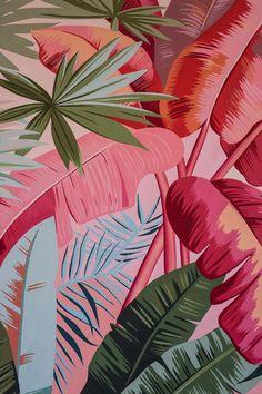 Plant Wallpaper, Tropical Wallpaper, Iphone Background Wallpaper, Flower Wallpaper, Coral Wallpaper, Floral Wallpaper Iphone, Floral Pattern Wallpaper, Colorful Wallpaper, Usa Tumblr