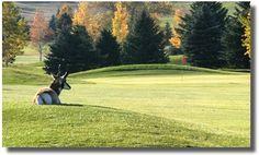 Douglas Golf Course
