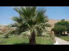 Brayka Reef Resort 5★ Марса Алам, Египет