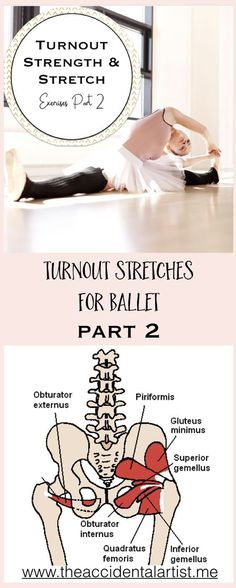Understanding how to rotate is to know the turnout muscles. Click on photo for video and post and learn more! via @The Accidental Artist