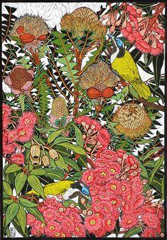 Botanical Drawings, Botanical Art, Botanical Illustration, Illustration Art, Floral Illustrations, Australian Wildflowers, Australian Native Flowers, Australian Artists, Linocut Prints