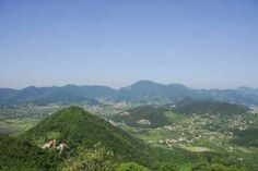 Vino Veneto Serprino: l'estate dei Colli Euganei