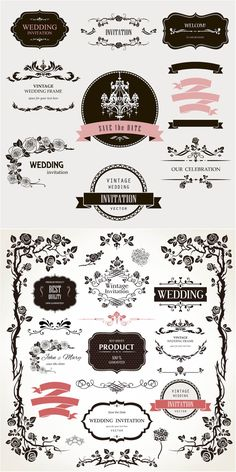 2 sets of vector decorative floral wedding design elements with ornate vintage frames, floral borders, different classic embellishments and labels for your ornamented wedding invitations and other designs. Web Design, Line Design, Graphic Design, Vector Design, Wedding Logos, Vintage Wedding Invitations, Clipart, Photoshop, Typographie Fonts