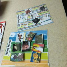 SC.1.L.14.3 Differentiate between living and nonliving things.  Living and non-living things picture board.