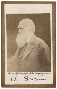 "Happy Birthday Charles Darwin! Charles Darwin, the author of ""On the Origin of Species"" and originator of the theory of natural selection, rented a house on the Isle of Wight from Julia Margaret Cameron in 1868. Darwin visited Cameron's private studio (a chicken house in her garden) during this period and paid her for the privilege of being photographed. --- PHOTO: © Julia Margaret Cameron, 1868 #history #darwin #portrait #originofspecies"