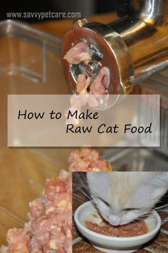 Raw Cat Food--I need to try this for the feline furbabies.