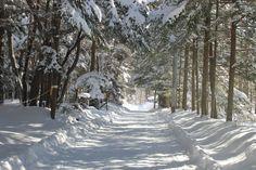 Karuizawa in the winter