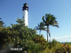 Outdoor Activities in South Florida - Lighthouse on Key Largo