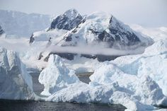 Want a Sneak Preview of Your Antarctica Cruise?