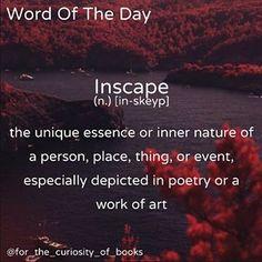 Word Of The Day! • • • #inscape #wordoftheday #forthecuriosityofbooks #words #books #literature #photooftheday #school #definition #instagram